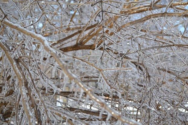 10 items to survive the polar vortex