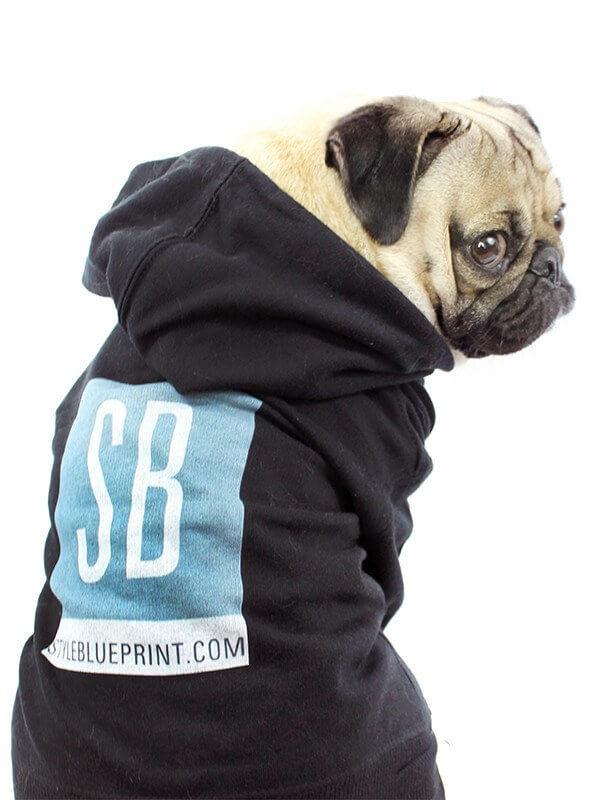 Doug the Pug sportin' his StyleBlueprint hoodie!